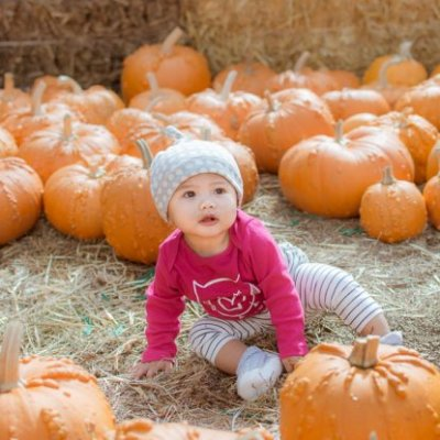 Another Day Another Pumpkin Patch