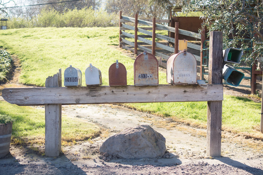 Mailboxes at Larson Family Winery